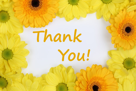The words Thank You with flowers Chrysanthemums