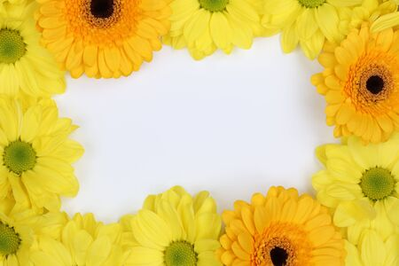 Frame from Chrysanthemums flowers in spring or mothers day with copyspace for your own text