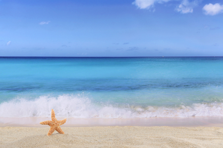 Beach background scene in summer on vacation with sand, sea star and copyspace