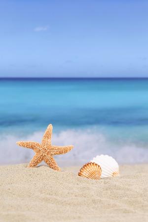 Strand Hintergrundszene in den Sommerferien Urlaub mit Sand, Muscheln und Sterne, copyspace
