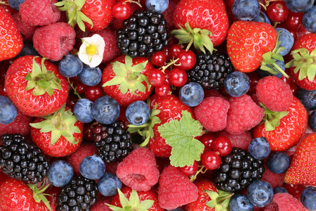 Berry fruits background with strawberries, blueberries, red currants, raspberries and blackberries