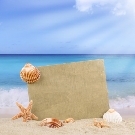 ocean and sea: Sandy beach scene in summer vacation with sea shells, stars and copyspace