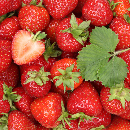 Strawberries berry fruits strawberry red berries background with leaf Standard-Bild