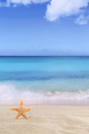 beach scene: Beach background scene in summer on vacation with sand, sea star Stock Photo