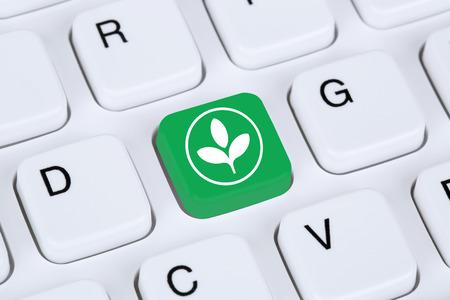 environmentally friendly: Green technology tech environmentally friendly nature environmental protection on internet computer Stock Photo
