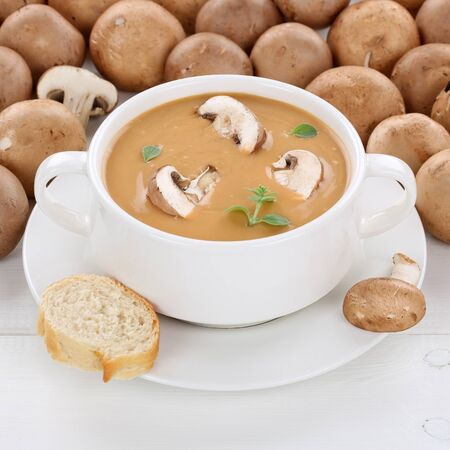 mushroom soup: Healthy eating mushroom soup meal with fresh mushrooms in cup