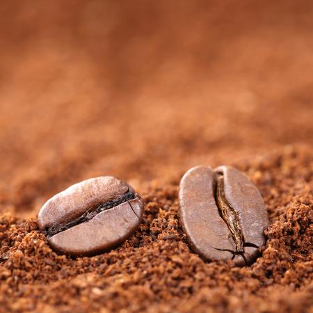 grano de cafe: granos de café con espacio de copia