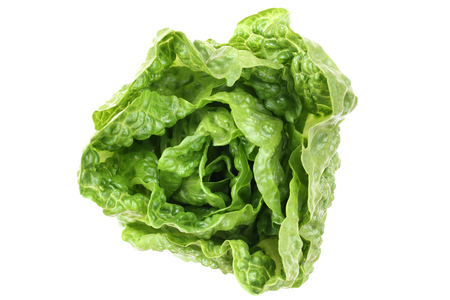 romaine lettuce: Romaine lettuce top view vegetable isolated on a white background