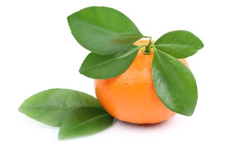 mandarin orange: Mandarin orange tangerine isolated on a white background