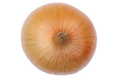 cebolla: Cebolla vista superior de verduras aislados en un fondo blanco Foto de archivo