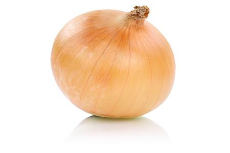 cebolla blanca: Cebolla vegetal aislado en un fondo blanco Foto de archivo