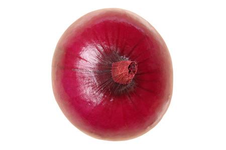 cebolla roja: cebolla roja vista desde arriba de verduras aislados en un fondo blanco Foto de archivo