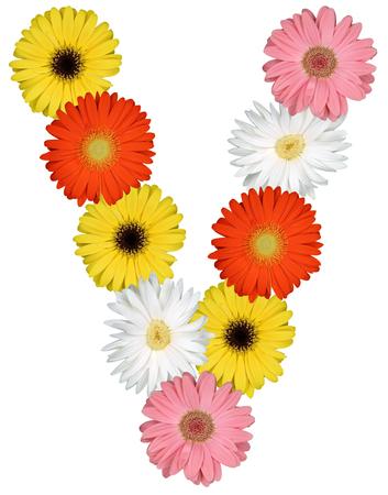 v alphabet: Letter V alphabet from flowers isolated on a white background Stock Photo