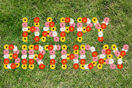 flores de cumpleaños: Happy Birthday with flowers flower nature meadow grass Foto de archivo