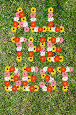 good wishes: All the best good luck wishes with flowers flower nature meadow grass Stock Photo