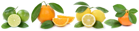 mandarin oranges: Collection of oranges mandarin lemon organic fruits in a row isolated on a white background