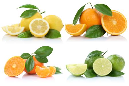 limon: Colección de naranjas mandarinas limones frutas aisladas sobre un fondo blanco