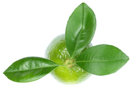 fresh leaf: Lime limes fruits top view isolated on a white background Stock Photo