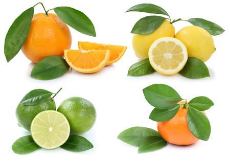 mandarin oranges: Collection of oranges mandarin lemon organic fruits isolated on a white background