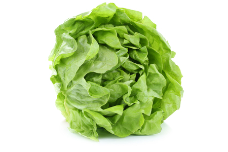 Head cabbage lettuce organic vegetable isolated on a white background