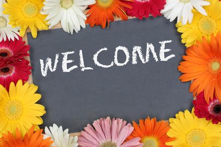 Giardino di benvenuto con i fiori colorati bordo fiore segno Archivio Fotografico