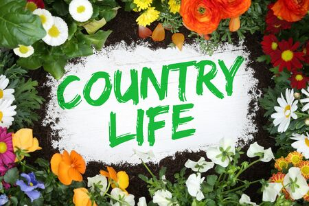 country living: Country life living countryside garden with flowers flower on wooden board