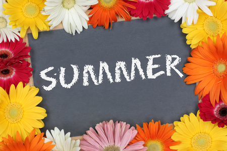 summer sign: Summer in garden with colorful flowers flower board sign