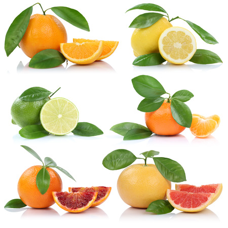 mandarin oranges: Collection of oranges mandarin lemon grapefruit fruits isolated on a white background Stock Photo