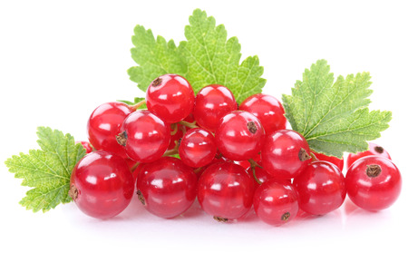 Red currant currants berries fruits fruit isolated on white Standard-Bild