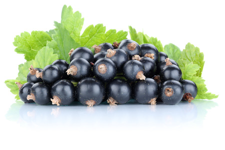 currant: Black currant currants berries fresh fruits fruit isolated on a white background