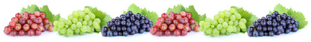 fruit background: Grapes in a row fruits fruit isolated on a white background