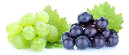 uvas: Uvas azules frutos verdes aisladas sobre un fondo blanco