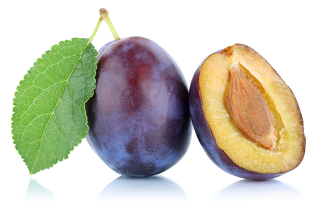 Plums plum prunes prune fruit isolated on a white background
