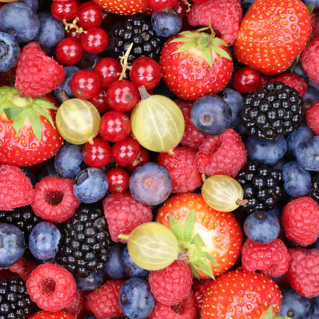 collections: Berry fruits berries fruit collection strawberries, blueberries raspberries red currants top view