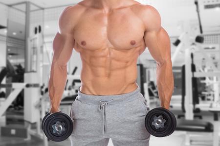 upper body: Bodybuilder bodybuilding muscles upper body gym strong muscular man dumbbells abs training fitness studio