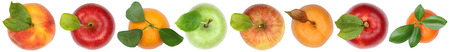 Fruits top view from above apple orange isolated on white in a row background Stock Photo