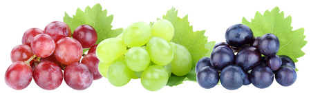 Grapes in a row grape red fruits fruit isolated on a white background Stockfoto