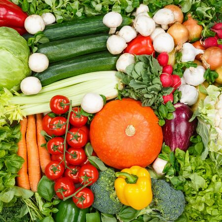 Vegetables collection food background square tomatoes carrots potatoes fresh vegetable backgrounds