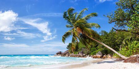 Seychelles Anse Georgette beach l'île de Praslin palm vue panoramique location de l'eau de mer Banque d'images