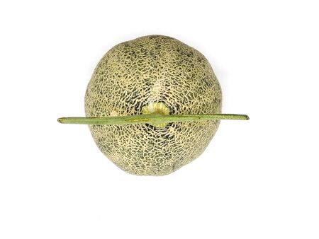Top view of A melon isolated on white background.
