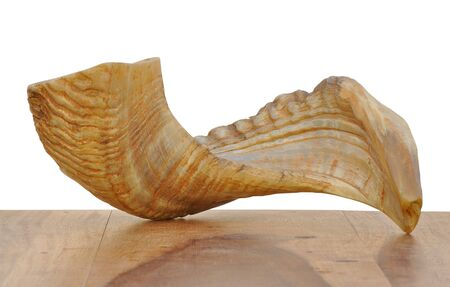 A traditional Jewish blowing horn made of a ram's horn. It is used in Jewish holidays like Yom Kipur for creating the Tekiya sound Stock Photo