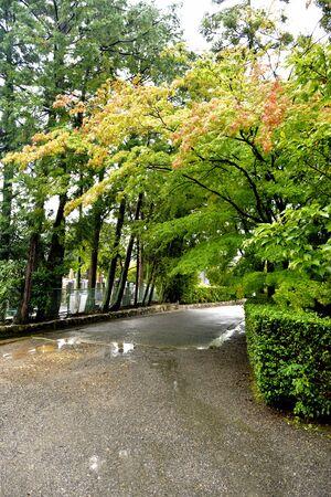 Street near the entrance of Tsumochiin