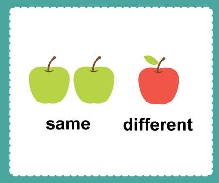 Opposite English Words same and different vector illustration. 일러스트