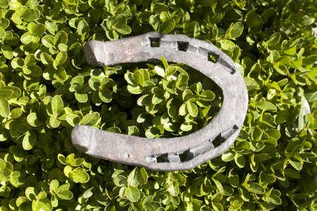 horseshoe for good luck  Stock Photo