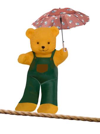 bear with umbrella  Stock Photo