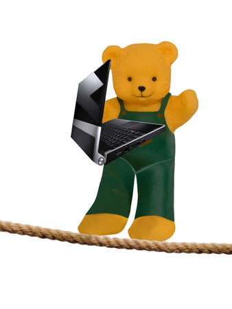Bear with laptop  Stock Photo