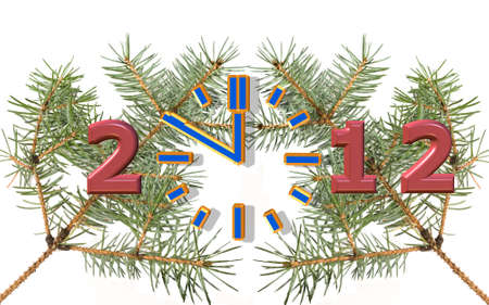 coming new year 2012