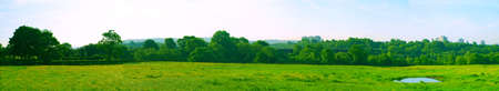 buttercups: Panoramic View of Green Fields Meadow With Buttercups Blue Sky and Trees Stock Photo