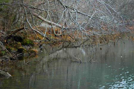 On the River Banks Stok Fotoğraf - 1335257