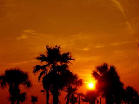 Sunset on the Gulf Stok Fotoğraf